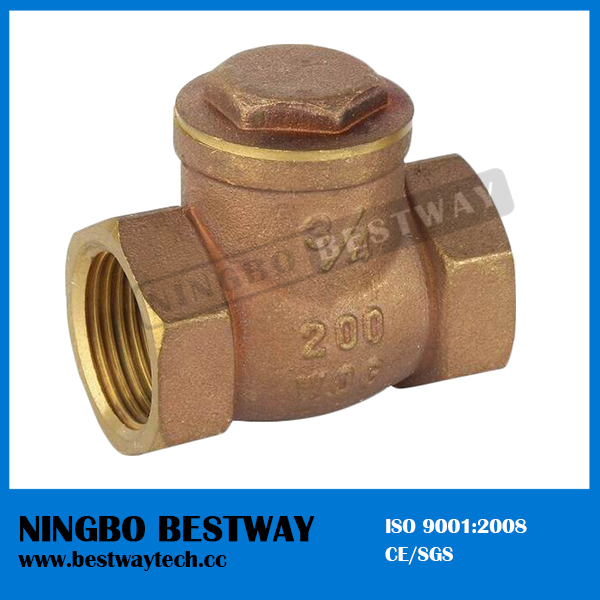 Top Sale Brass Swing Check Valve Factory (BW-C04)