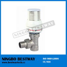 Brass Radiator Thermostatic Valve Fast Supplier (BW-R01)