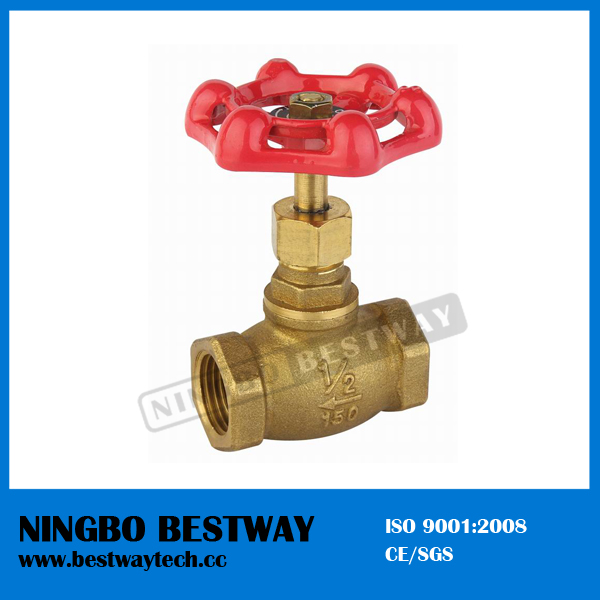 Brass Stop Cock Valve with Bottom Price (BW-S08)