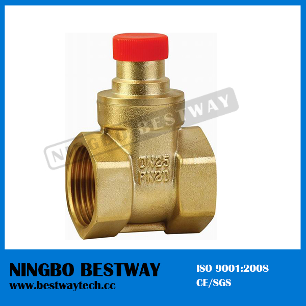 Brass Lockable Gate Valve for Water Meter Stock (BW-G09)