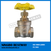 High Performance Nrs Thread Brass Gate Valve (BW-G07)