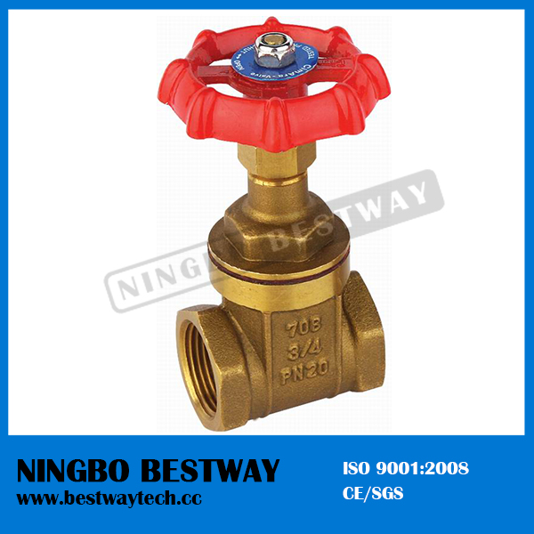 Brass PVC Gate Valve for Water Meter (BW-G05)