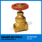 Forged Brass Gate Valve Pn16 (BW-G12)