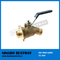 Brass Solder Sill Flange Hose End Valve Quarter Turn (BW-Z48)