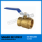 Light Brass 4 Inch Ball Valve (BW-B05)