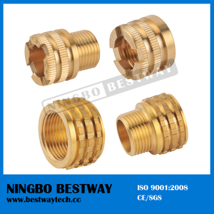 Best Quality Brass PPR Fittings (BW-730)