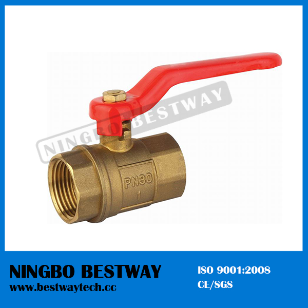 Brass 2 Inch Ball Valve with Iron Handle (BW-B10)