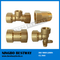 Socket Weld and NPT Thread Pipe Fitting (BW-656)