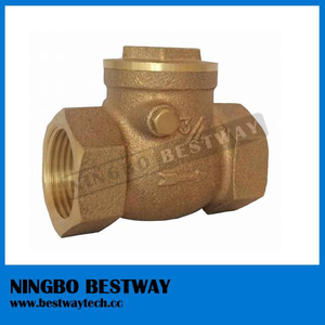 High Quality Bronze Check Valve (BW-Q11B)
