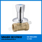 Brass Built in Valve Factory Fast Supplier (BW-S13)