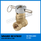 Welcome OEM ODM portable lockable gate valve (BW-G13)
