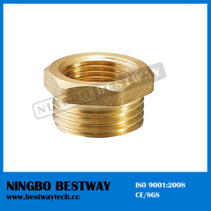 Brass Fitting for PE Pipe Fast Supplier (BW-631)