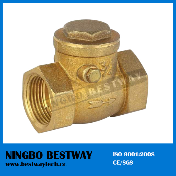 High Performance Brass Check Valve in China Hot Sale (BW-C01)