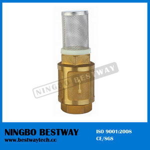 Long Neck Brass Foot Valve with S/S Filter