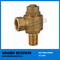 High Quality Bronze Y Strainer Filter (BW-Q10)