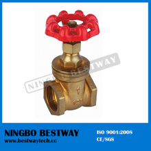 High Quality Brass Steam Gate Valve (BW-G07)