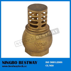 China Brass Foot Check Valve Direct Factory (BW-C08)