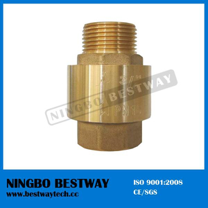 Both Male Thread Brass Check Valve (BW-C13)