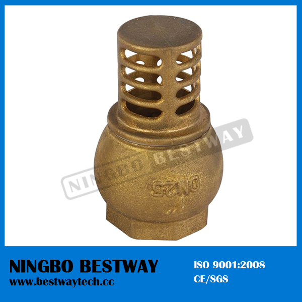 Water Pump Foot Valve for Sale (BW-C08)