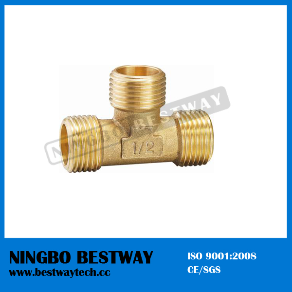 High Quality Pipe Branch Tee Fitting (BW-644)